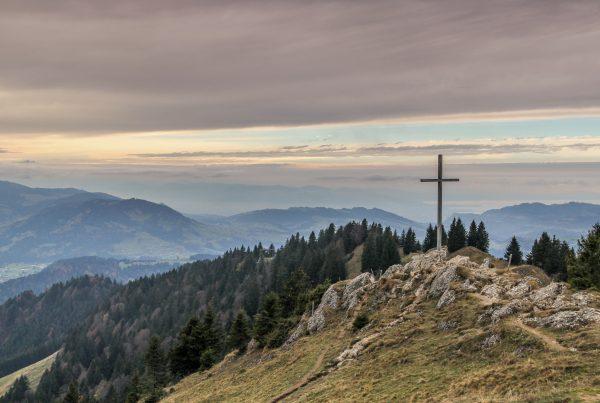 gray cross near tall green trees